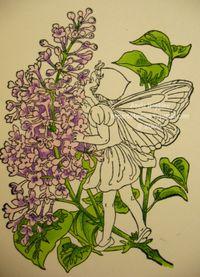 Fairy6