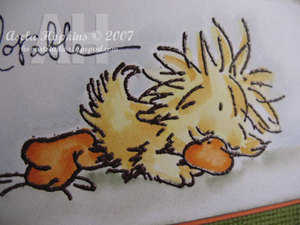 Chickdetail_2